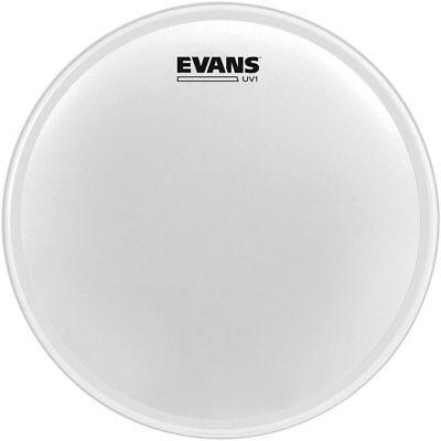 Evans B14uv1 Snare Drum Head 14  Uv1 Upc 019954202767