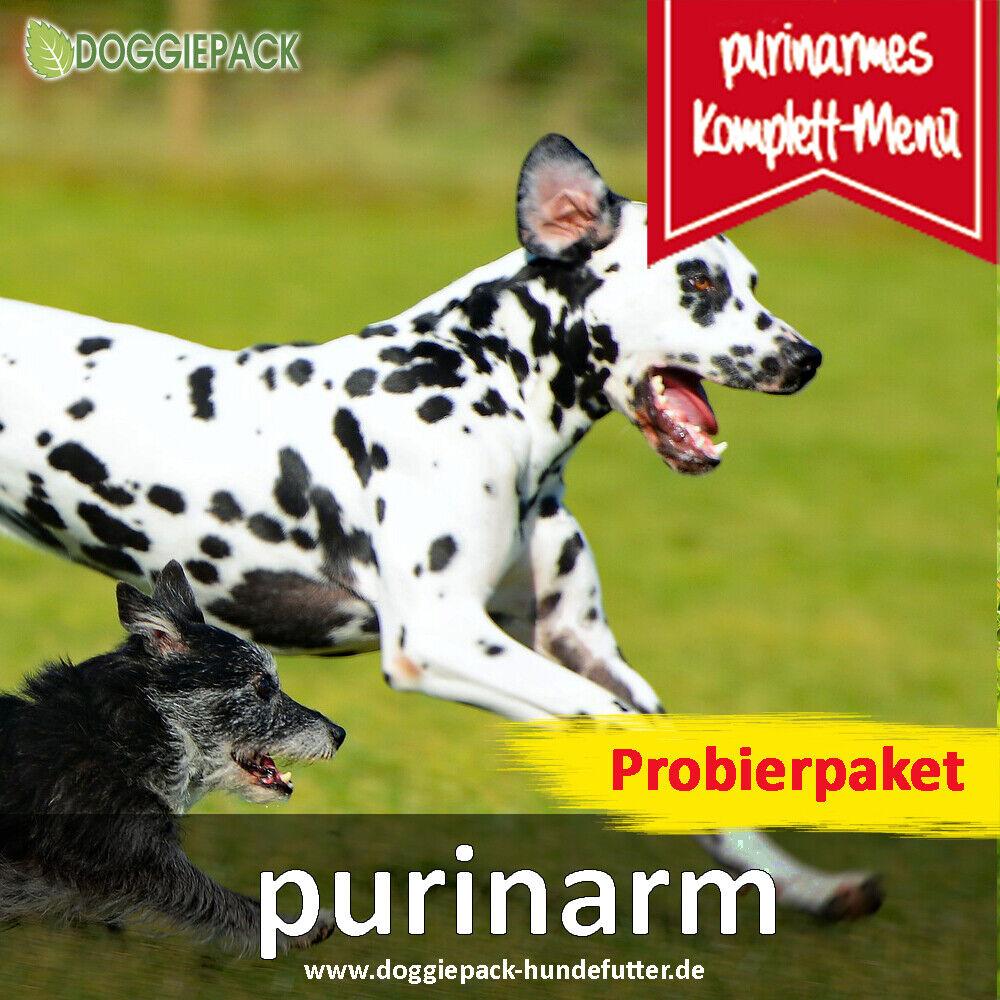 Probierpaket + purinarmes Hundefutter + Komplett BARF Menü + Leishmaniose Hund