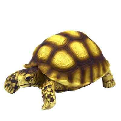 Hobby Turtle 2 - 10x6x5cm Schildkröte für Terrarium Deko Zubehör Schildkröten ()