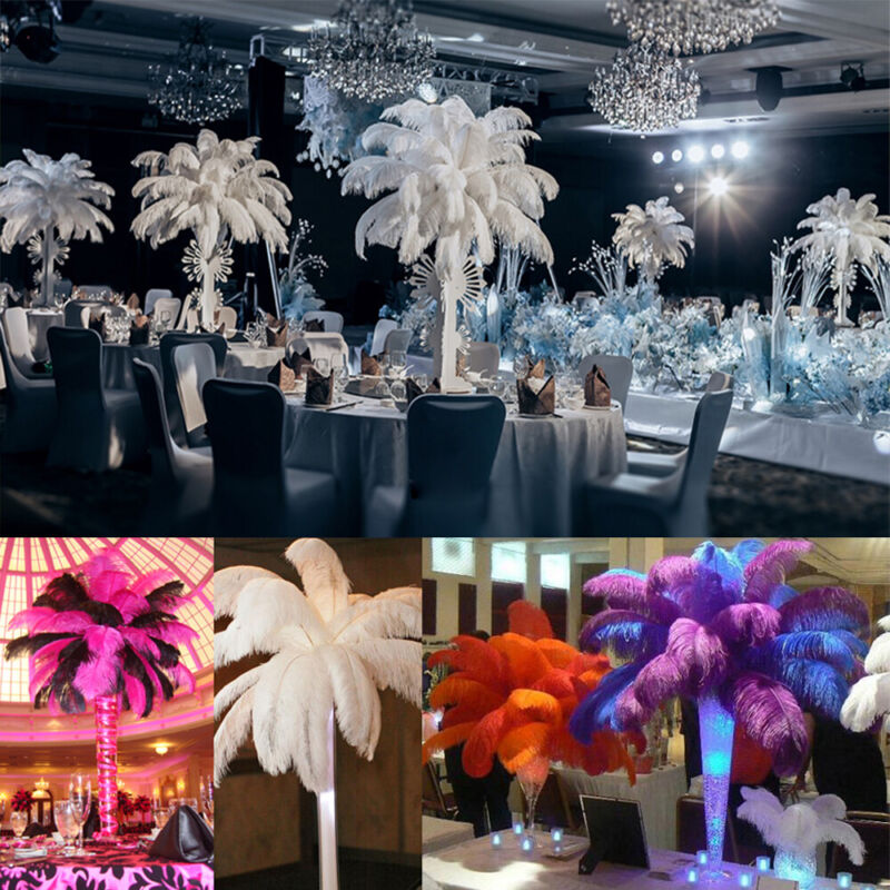 """10/25pcs 10-12"""" Dyed Elegant Ostrich Feathers Natural Feather DIY Pary Home Deco"""