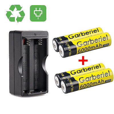4PCS 6000mAh GARBERIEL Li-ion 3.7V Rechargeable 18650 Battery + Dual Charger