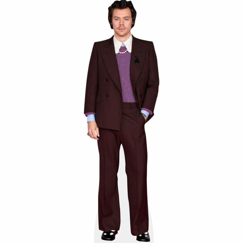 Harry Styles (Burgundy Suit) Mini Cutout