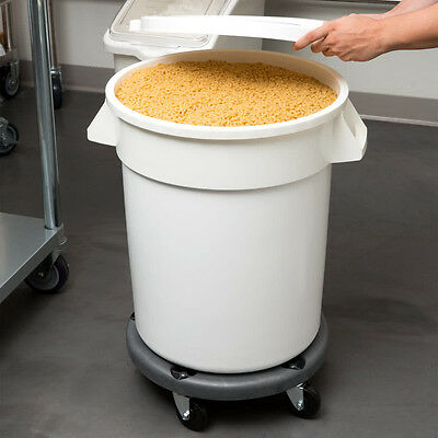 Three Bins Commercial 20 Gallon Mobile Dry Ingredient Storage Bin Lid And Dolly
