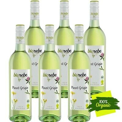 BioRebe Pinot Grigio Vegan IGP trocken, weiß 12% vol 6 x75cl DE-ÖKO-039 Biowein