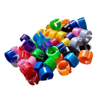 100pcs Plastic Chicks Rings Clip Poultry Leg Band Bird Pigeon Parrot 10 Colors