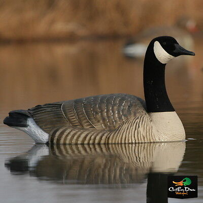 AVERY GREENHEAD GEAR PRO GRADE CANADA LIFE-SIZE LS GOOSE FLOATER ACTIVE DECOYS 4
