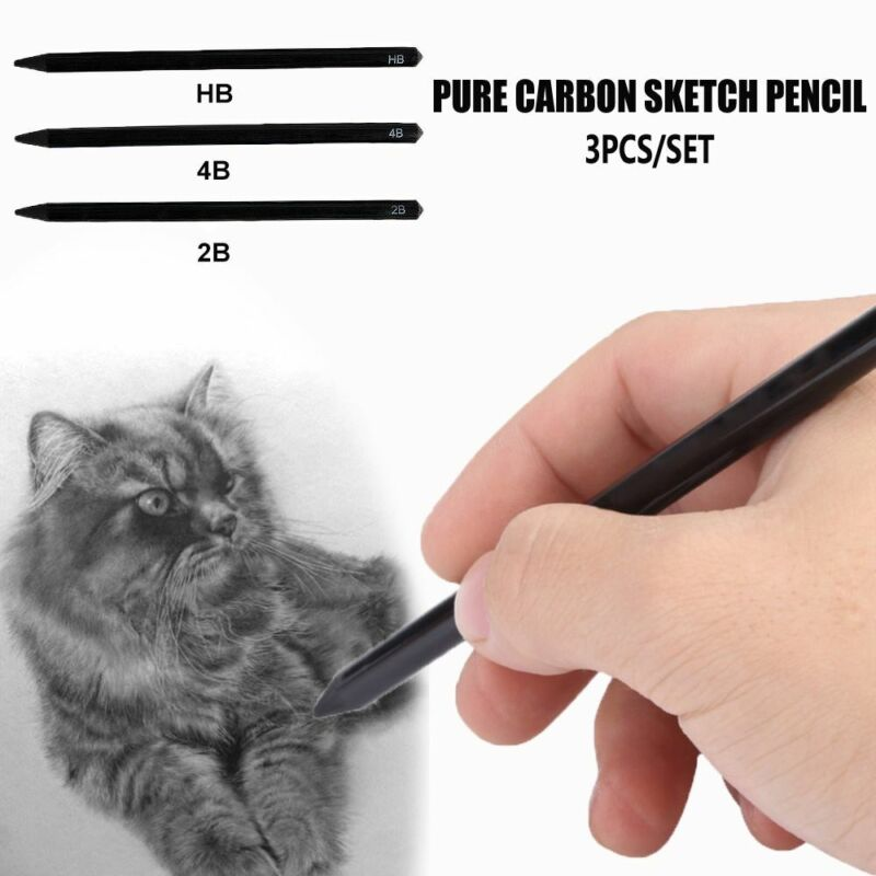 3pcs/set 2B/4B/HB Pure Carbon Drawing Sketch Pens Woodless C