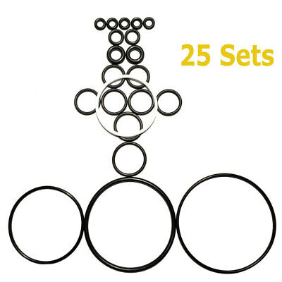 25 X New Complete O-ring Kits Fit For Graco Fusion Air Purge Ap Gun 246355