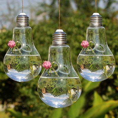 3pcs Home Clear Glass Flower Plant Hanging Vase Planter Terrarium Container Deco