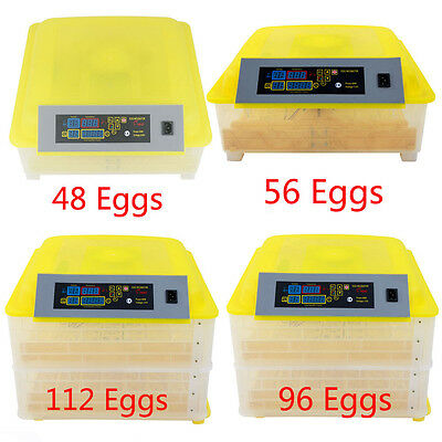 48 56 96 112 Digital Egg Incubator Hatcher Temperature Control Automatic Turning
