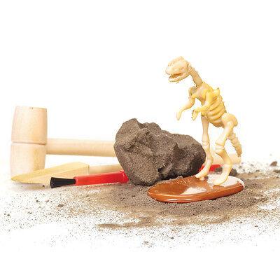 Dinosaurier Ausgrabungsset, wiederverwendbar
