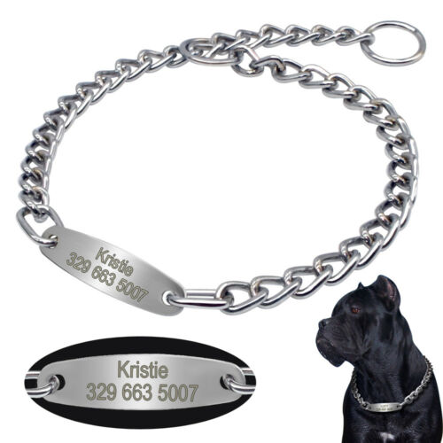 Personalized Dog Collars Metal Chain Training Dog Choker Col