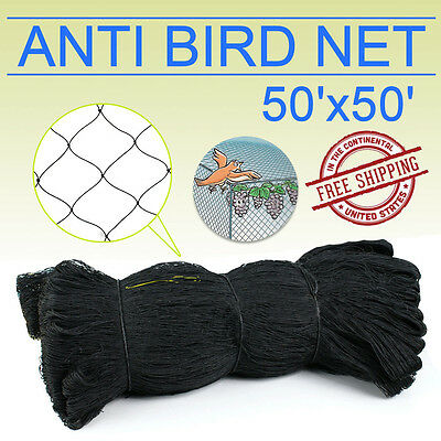 50x50 Bird Netting Chicken Protective Net Screen Poultry Garden Aviary Game Oy