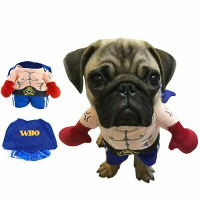 Pet Cat Dog Boxer Standing Costume Cosplay Funny Halloween Clothes Suit Uniform](Halloween Costume Boxer Dog)