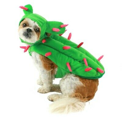 Best Halloween Costumes For Dogs (Best Furry Friends Animal Pet Cactus Halloween Costume,)