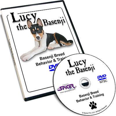Lucy the Basenji DVD Breed Behavior Dog Training Tips and Tricks Video Film