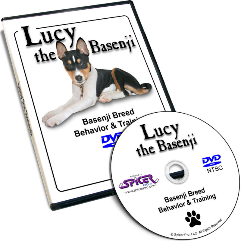 Lucy the Basenji Tricolor Breed Behavior Training DVD