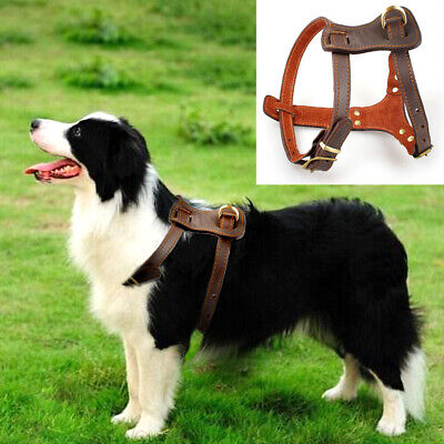 Leather Medium Large Dog Harness Durable Adjustable for Pitbull Boxer Rottweiler Boxer German Shepherd