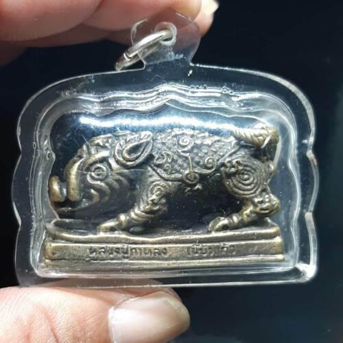 OLD WILD BOAR LP KALONG TALISMAN Waterproof-Case Thai Amulet Pendant Thailand