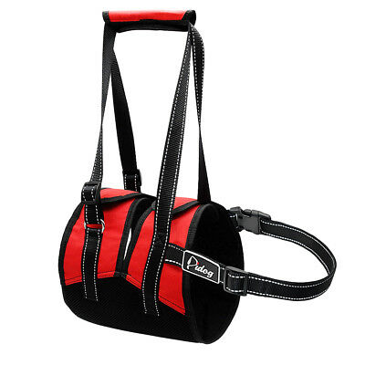 Large Dog Lift Harness Rehabilitation Support Help Canines Aid for Injuries Vest