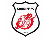 Football Team Looking For New Players In All Positions For The New Season