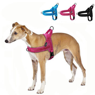 No Pull Dog Harness Large Small Dog Clothes Vest Beagle Pitbull Harness Nylon US
