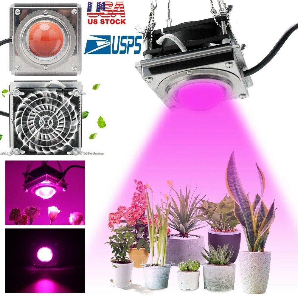 3000w Watt Cob Led Grow Light Full Spectrum Lamp For Plant Hydroponics Flower Us Ebay