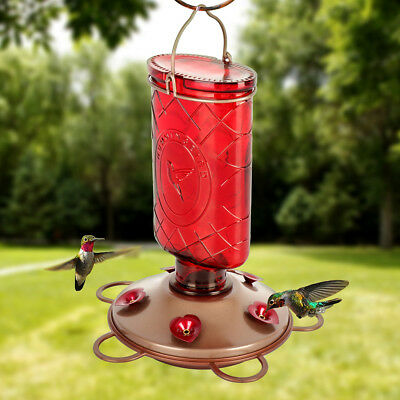 Outdoor Balcony Red Bird Feeder Drink Container Glass Bottle Hanging 620ml