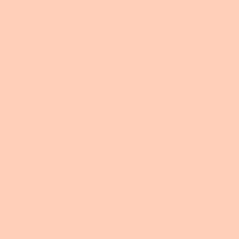 102 Light Amber Gel Filter Sheet 10 x 10