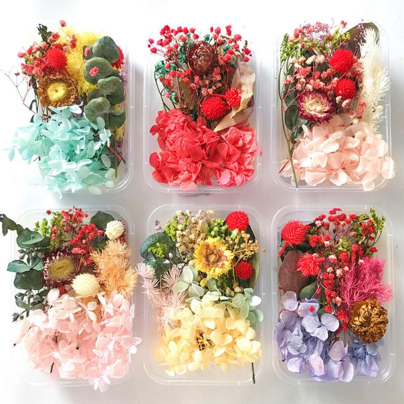 1Box Mix Dried Flower Nail Art Candle Epoxy Resin Mold Sticker Jewelry DIY Craft