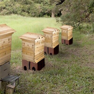 Beehive Beekeeping House Wooden Box Hive Honey Keeper For Auto 20 Flow Raw Frame