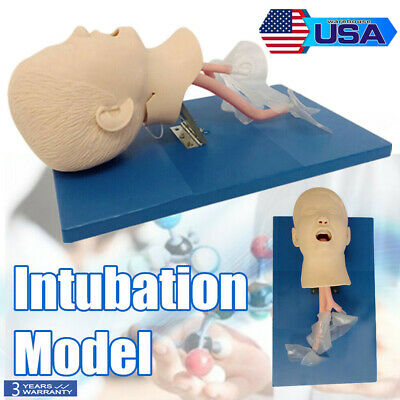 Pro Intubation Manikin Study Teaching Model Airway Management Trainer Plastic Us