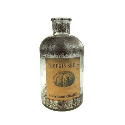 Antique Style Glass Pumpkin Seeds Jar Autumn Decor, Clear, 7-3/4-Inch
