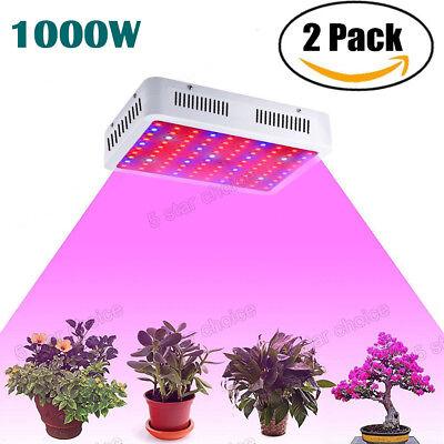Led Grow Lights Plants - 2PACK 1000W LED Grow Light Lamp Dual Chip Full Spectrum Medical Indoor Plant Veg