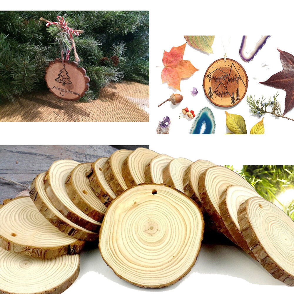 15 Pieces 8-9cm Unfinished Predrilled Wood Slices Round Log Discs With