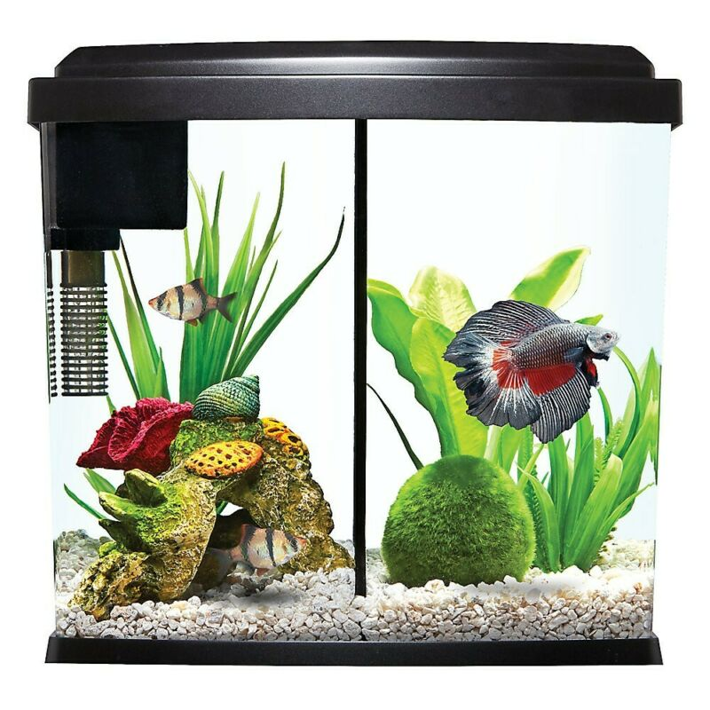 2.5 Gallon Fish Tank - Easy Aquarium Kit w/ removable Divider Filter & LED Light
