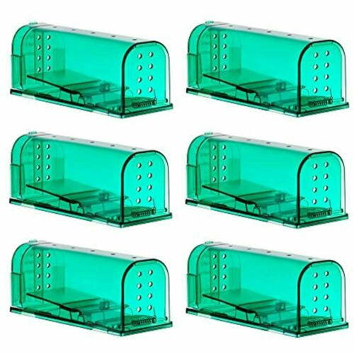 6 Pack Humane Mouse Traps Catch And Release Pet Child Safe No Poison Green Color