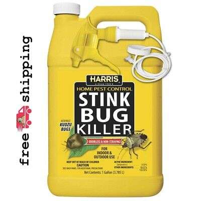 Harris  Home Pest Control  Insect Killer  For Stink Bugs 1 g