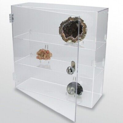 "Rock Collection Display Case Acrylic Glass Curio 9-1/2"""