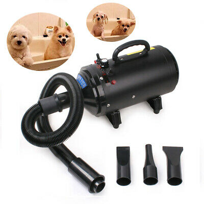 2400W Profesional Secador de Pelo Perros Animales Hundetrockner Pet Dryer Blower