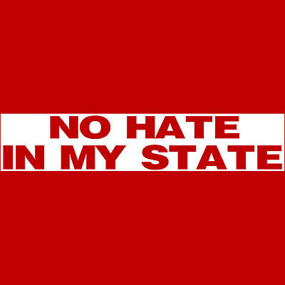 NO HATE IN MY STATE  Bumper Sticker  Equal Rights for Everyone  BUY 2 Get 1