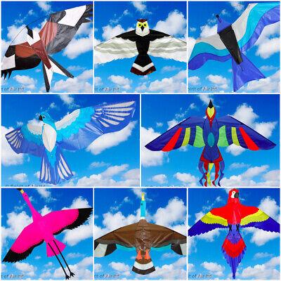 Spirit of Air Kite Bird Single Line Hawk Owl Phoenix Duck Gul Colourful Fun Toy