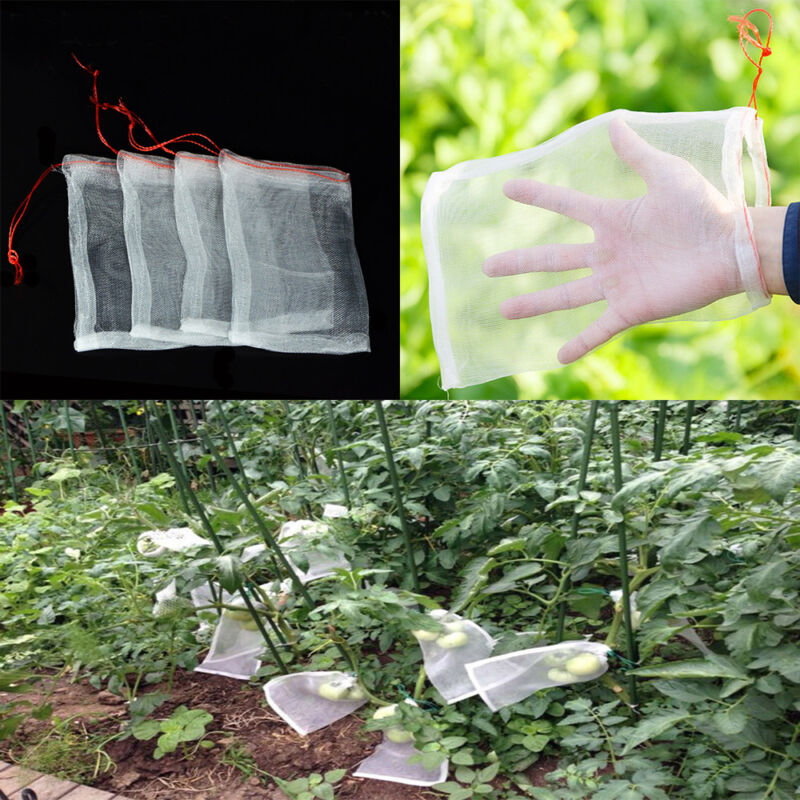 US 50pcs Garden Plant Fruit Protect Drawstring Net Bag Against Insect Pest Bird