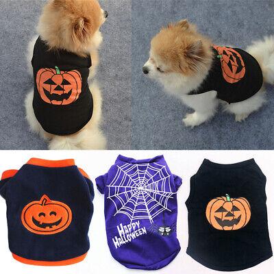 Halloween Haustier Hund Kürbis Outfit Spinnennetz Welpe Cosplay Party Kostüm