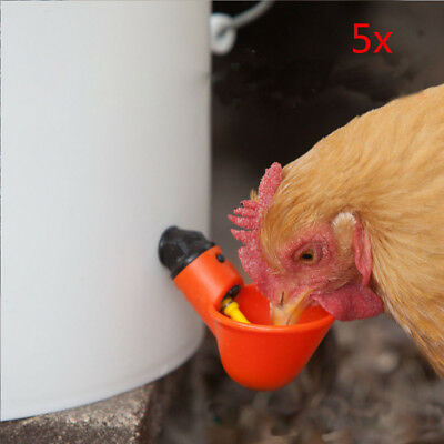 5 X Poultry Water Drinking Cup Chicken Hen Fowl Plastic Automatic Drinker Usa