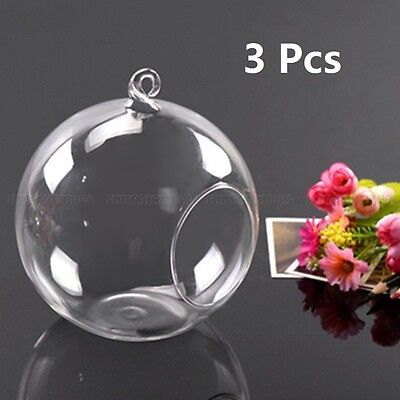 3pcs Flower Glass Hanging Vase Ball Plant Terrarium Container Home Wedding Decor