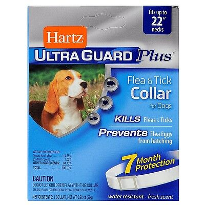 Hartz Ultraguard Plus Flea - Tick Collar for Dog, White 1 ea (Pack of 9)