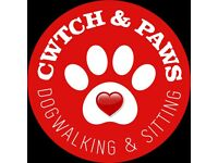 Dog Walker and Pet Sitting - Cwtch & Paws dog walking service in Caerphilly and North Cardiff area