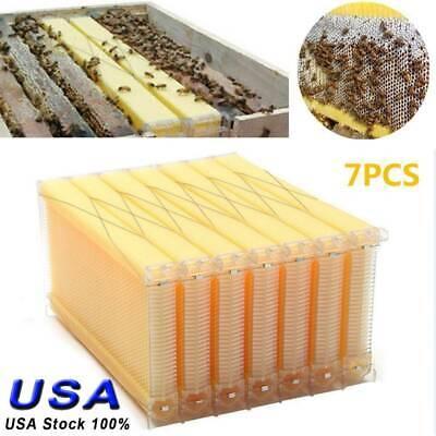 7pcs Bee Hive Auto Frames Honey Beekeeping Kit Beehive Harvesting Honey Us Stock
