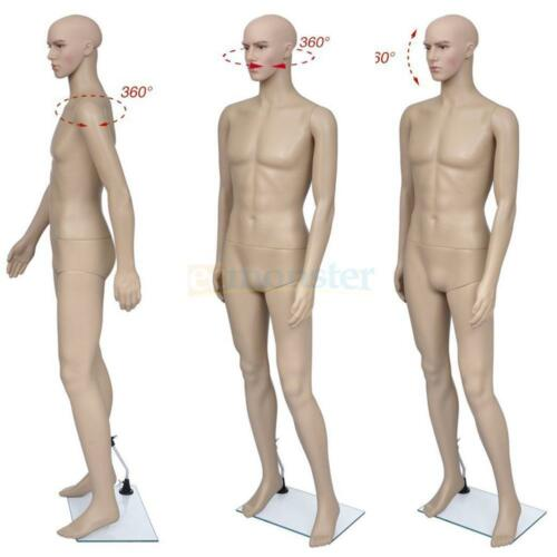 Male Mannequin Full Body PE Realistic Shop Display Head Turns Dress Form w/ Base